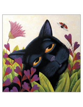 Black Cat and Lady Bug...