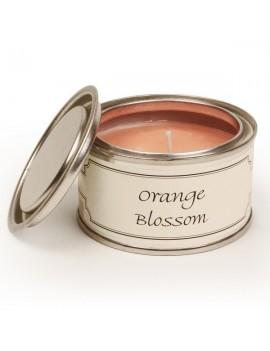 Pintail Candles Orange...
