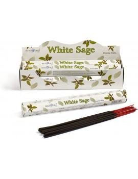 Stamford White Sage...